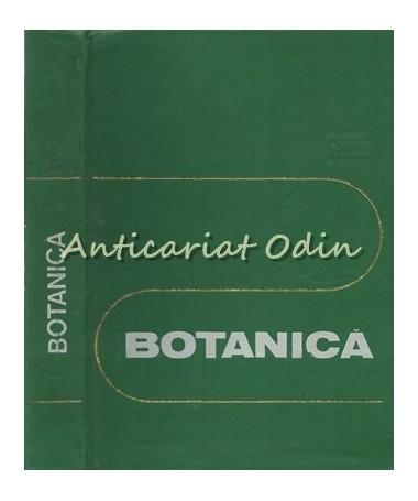 32109_Anghel_Nyarady_Paun_Botanica