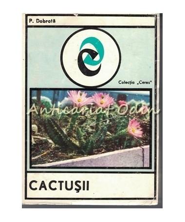 35423_Dobrota_Cactusii