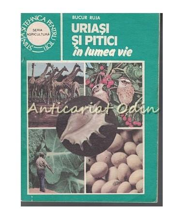 37173_Bucur_Ruja_Uriasi_Pitici