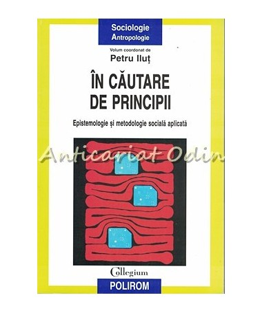 In Cautare De Principii - Petru Ilut