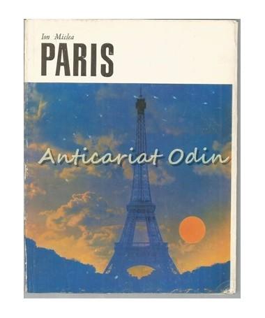 Paris - Ion Miclea