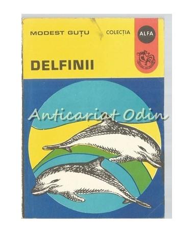 38489_Modest_Gutu_Delfinii