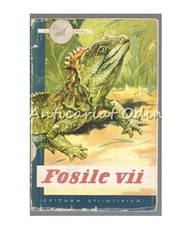 39165_Botosaneanu_Fosile_Vii