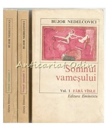 39686_Nedelcovici_Somnul_Vamesului