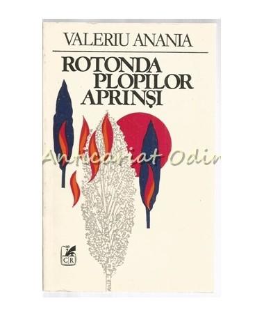 39717_Anania_Rotonda_Plopilor_Aprinsi