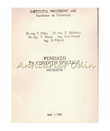39878_Silion_Fundatii_Conditii_Speciale_Probleme