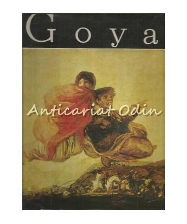 00157_Goya_Vasile_Florea