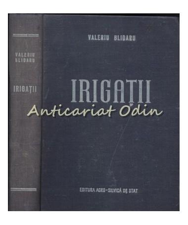 00882_Irigatii_Blidaru