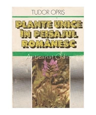 06068_Opris_Plante_Unice